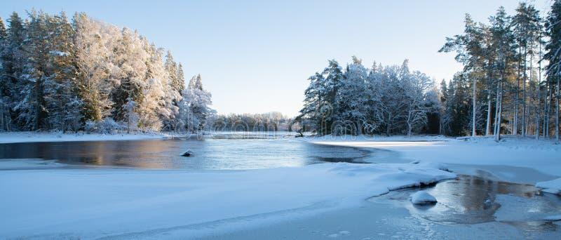 Река в морозном утре стоковая фотография