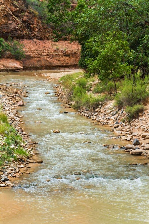 Река в национальном парке Сиона стоковое изображение rf