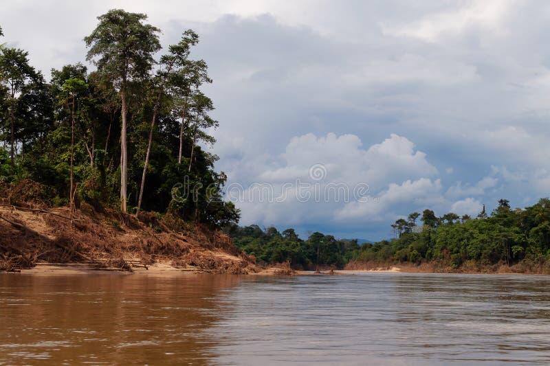 Река в национальном парке Taman Negara стоковая фотография rf