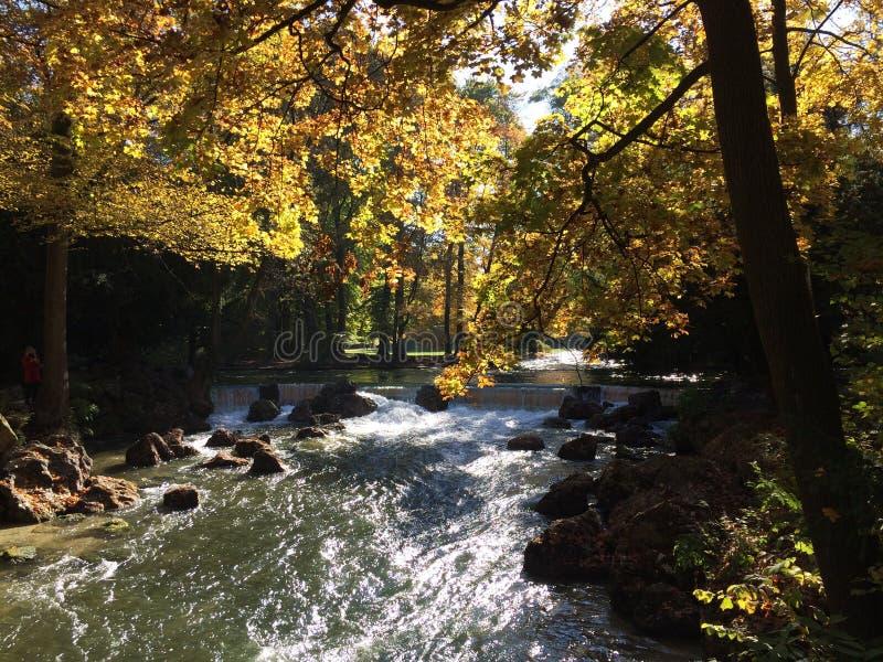 Река в осени стоковое фото rf