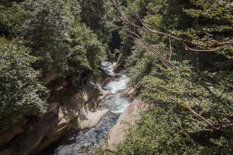 Река в середине долины окруженной деревьями стоковое изображение rf