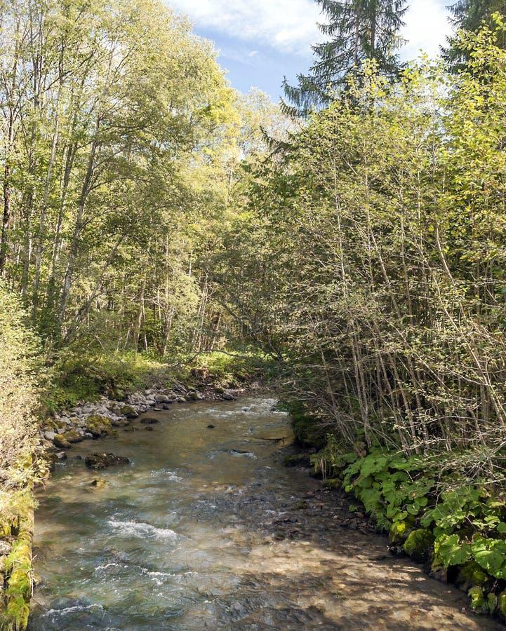 Река в французских Альпах стоковые изображения rf