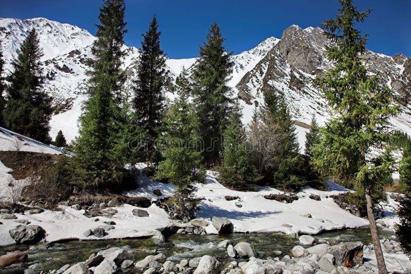 Река горы весны стоковое изображение