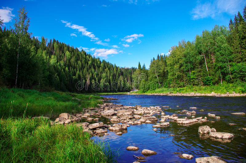 Река горы в глубоких древесинах гор Ural стоковые фотографии rf