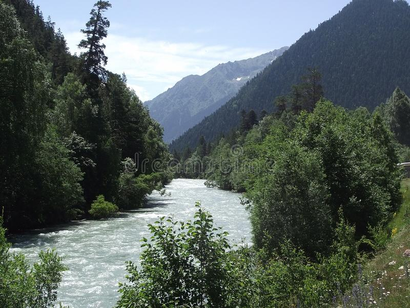 Река горы в лете стоковое фото
