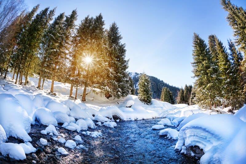 Река горы зимы стоковые фотографии rf
