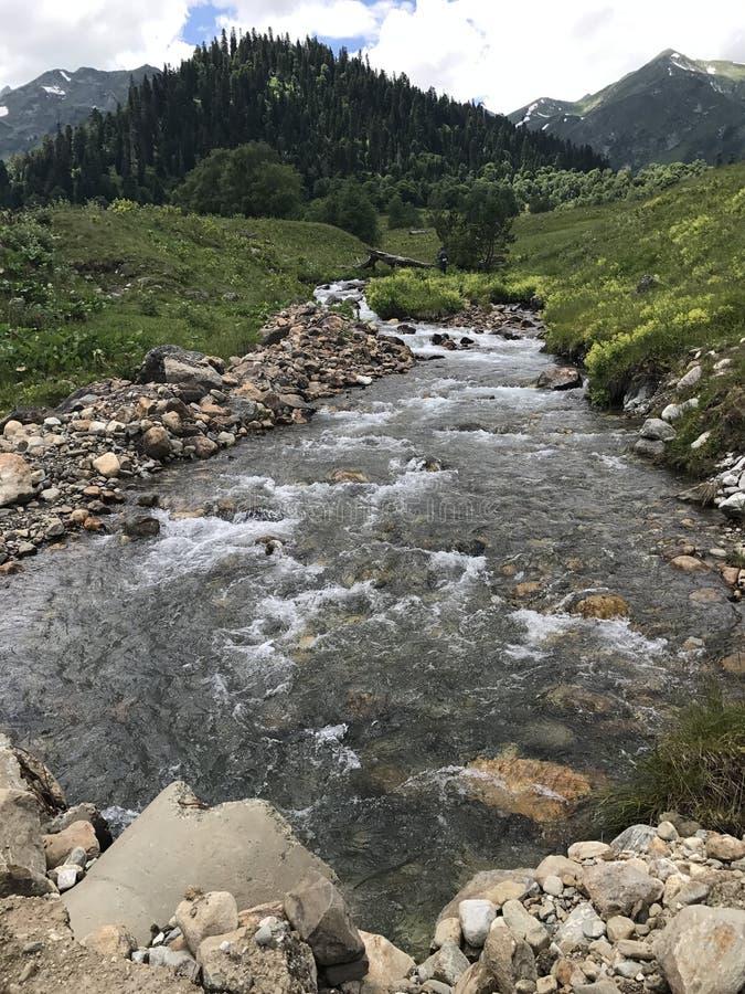 Река горы и высокогорное medow стоковое фото rf