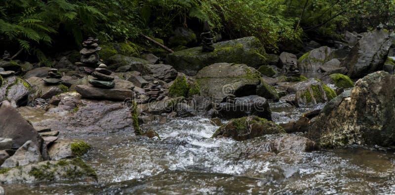 Река горы ландшафта с водопадами и речными порогами стоковые изображения rf