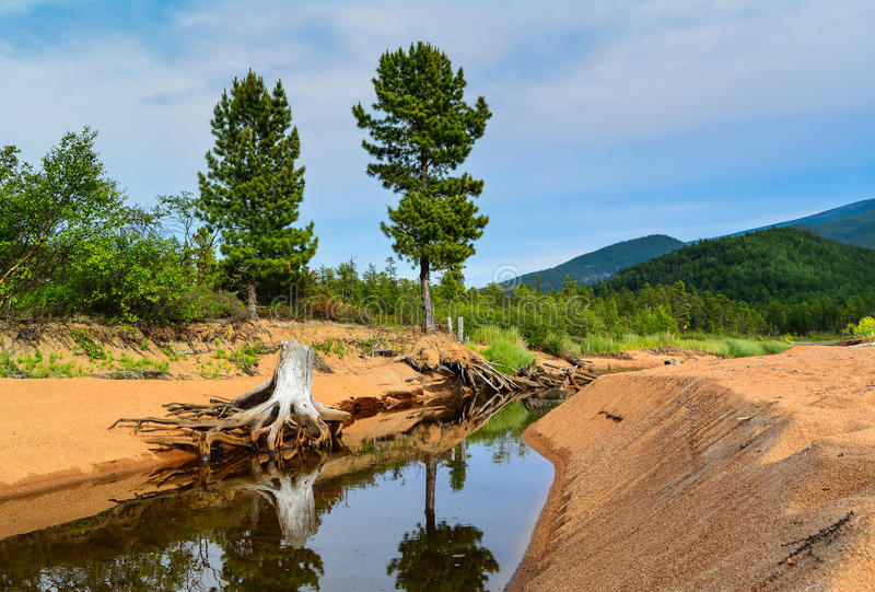 Река горы на Lake Baikal стоковое фото rf