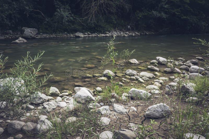 Река горы пропускает стремительно и кипит среди утесов стоковые фото