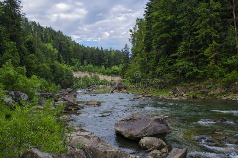 Река горы с быстрым течением воды вдоль утесов стоковое изображение