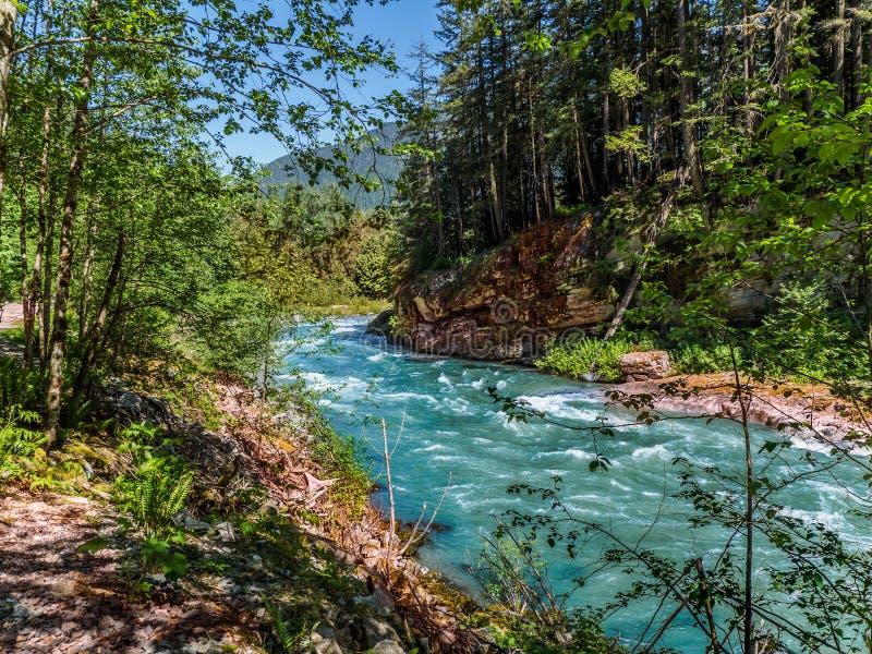 Река горы с одичалыми речными порогами стоковые фотографии rf