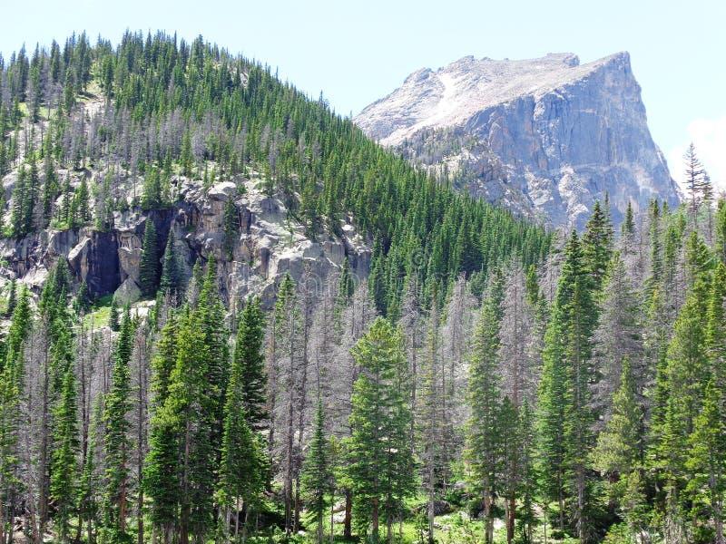 река горы трясет 3 стоковое фото