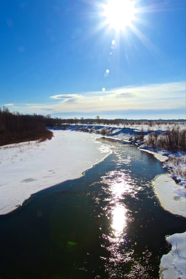 Река леса на солнечный зимний день стоковые фото