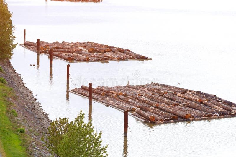 Река журналов сплава стоковые фото