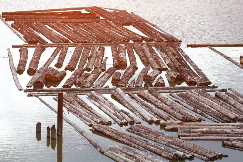 Река журналов сплава стоковые фотографии rf