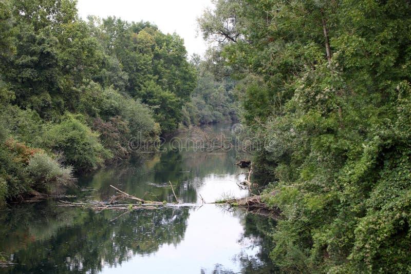 Река Изара в Баварии стоковые изображения rf