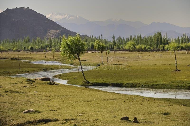 Река Инд пропуская через равнины в Ladakh, Индии, стоковые изображения