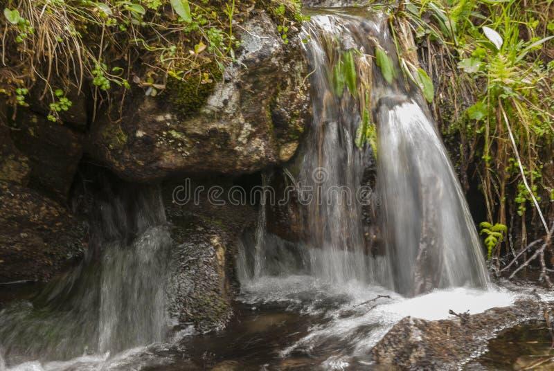 Река и водопад стоковые изображения