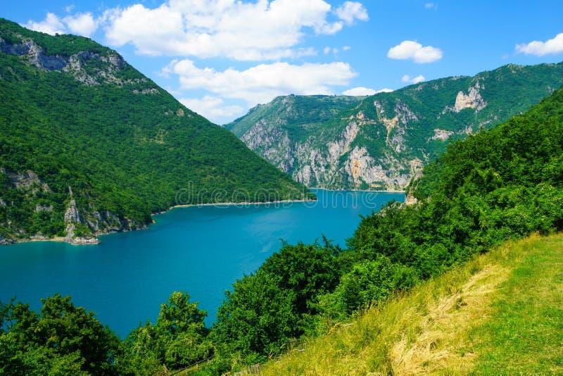 Река и озеро Piva стоковое изображение rf