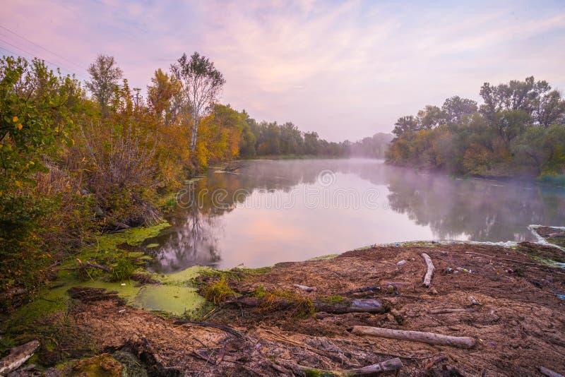 Река и дорога. стоковые фотографии rf