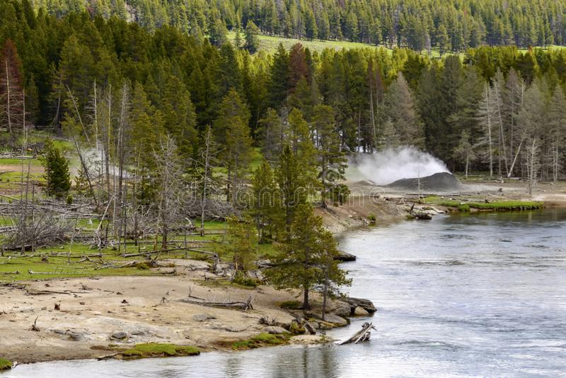 Река Йеллоустоун, национальный парк Йеллоустона, Вайоминг, США стоковое фото rf