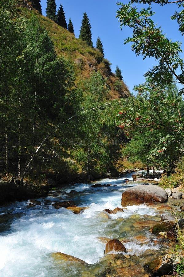 Река Казахстан Алма-Ата стоковое изображение