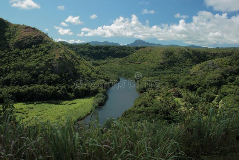 Река Кауаи стоковая фотография rf