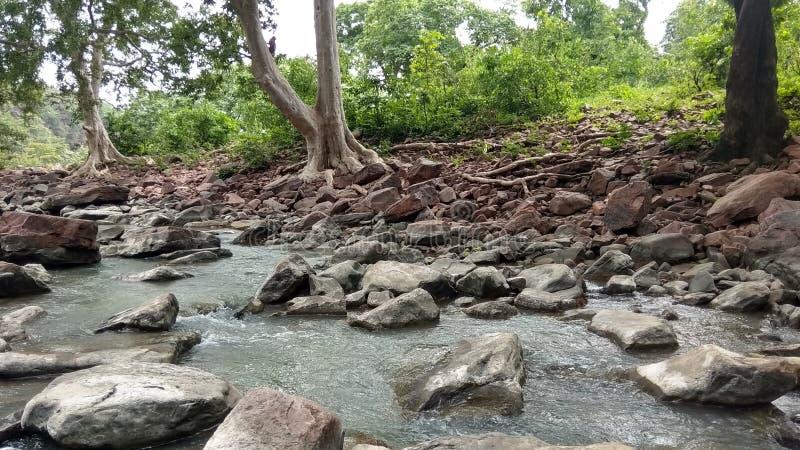 Река ландшафта, гора, лес, зеленые деревья, мирные стоковые фото
