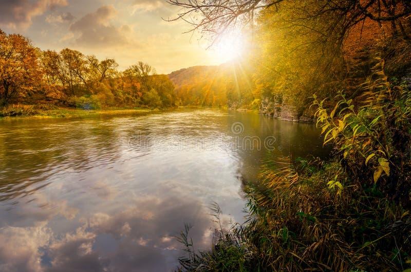 Река леса в горах осени на заходе солнца стоковое изображение rf