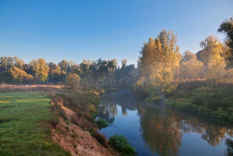 Река лета утра стоковое изображение rf