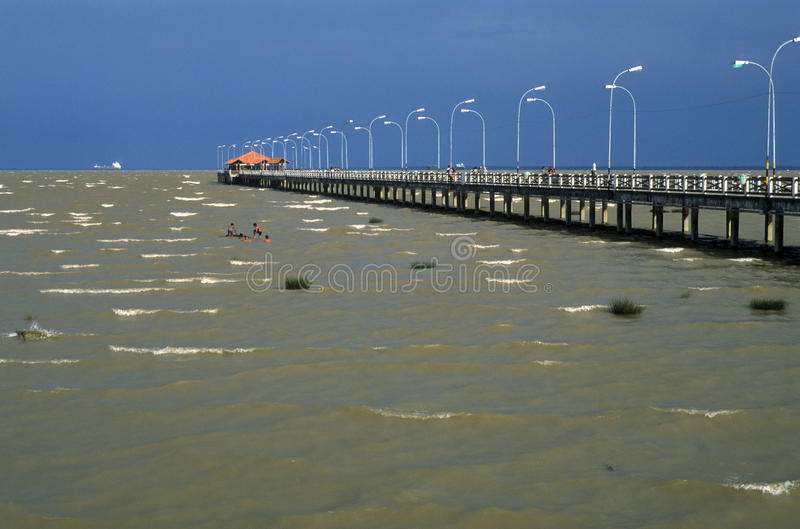 река мостк Амазонкы стоковая фотография rf