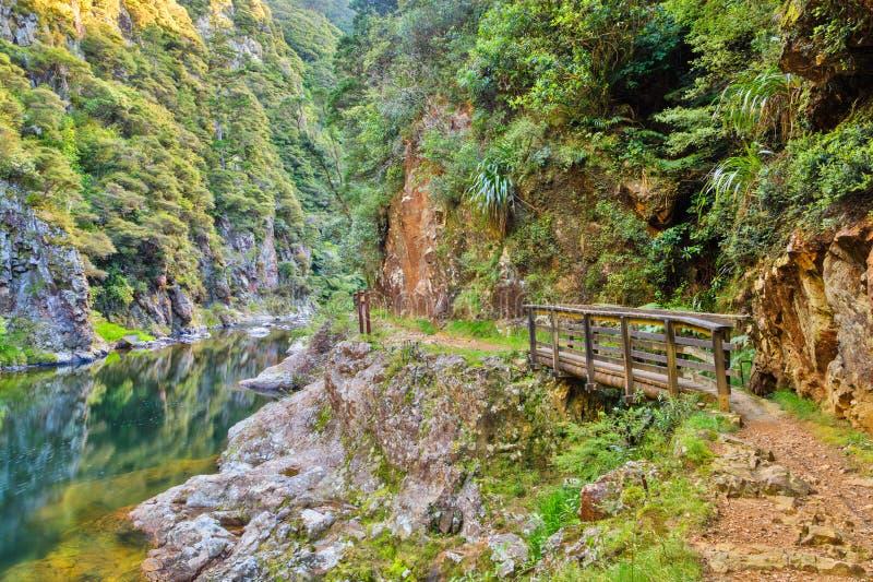 Река на дне глубокой долины, с идя следом около его стоковые изображения rf