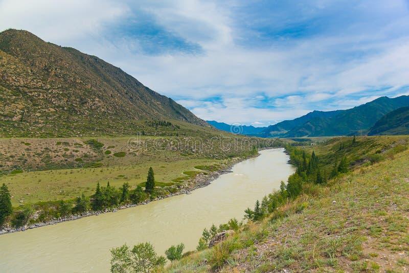 Река на летний день, республика Katun Altai, Россия стоковые изображения rf