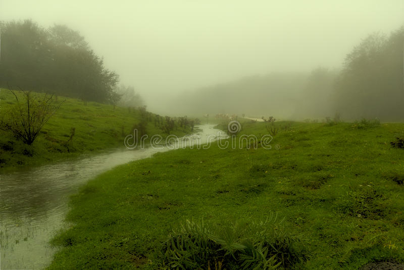 Река на тумане стоковые изображения rf