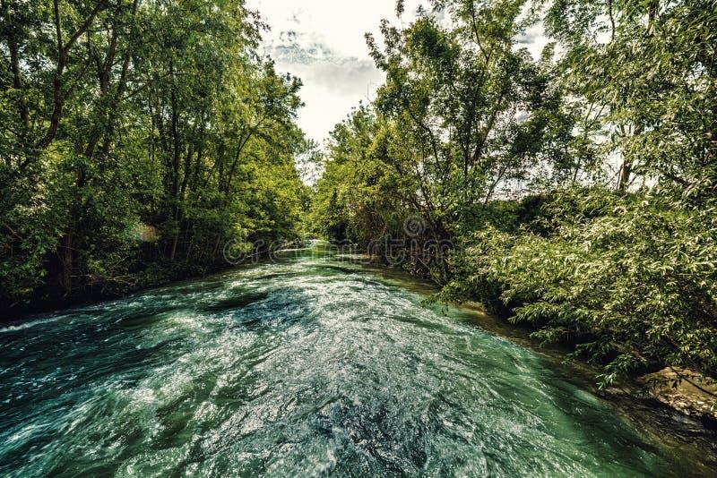 Река на холмах Apennines стоковое фото