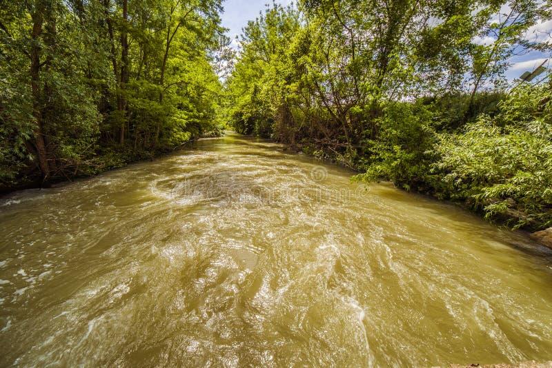 Река на холмах Apennines стоковые фото