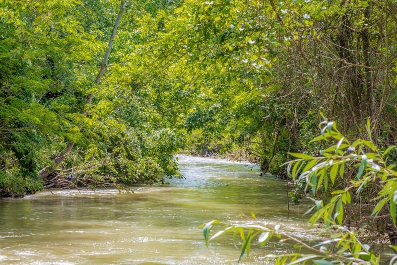 Река на холмах Apennines стоковые изображения rf