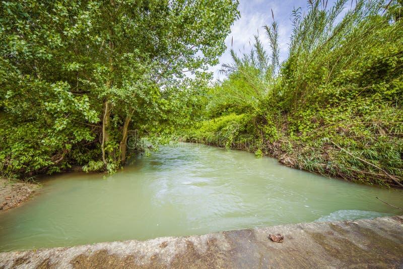 Река на холмах Apennines стоковая фотография rf