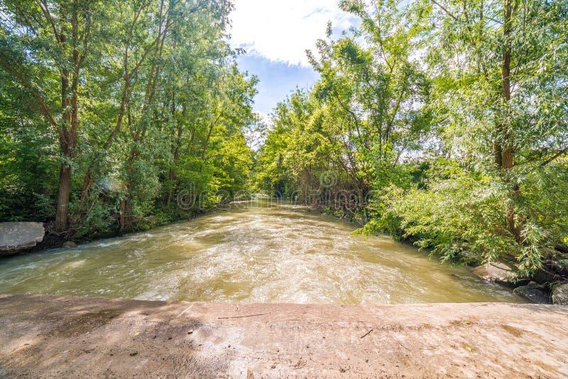 Река на холмах Apennines стоковые фотографии rf