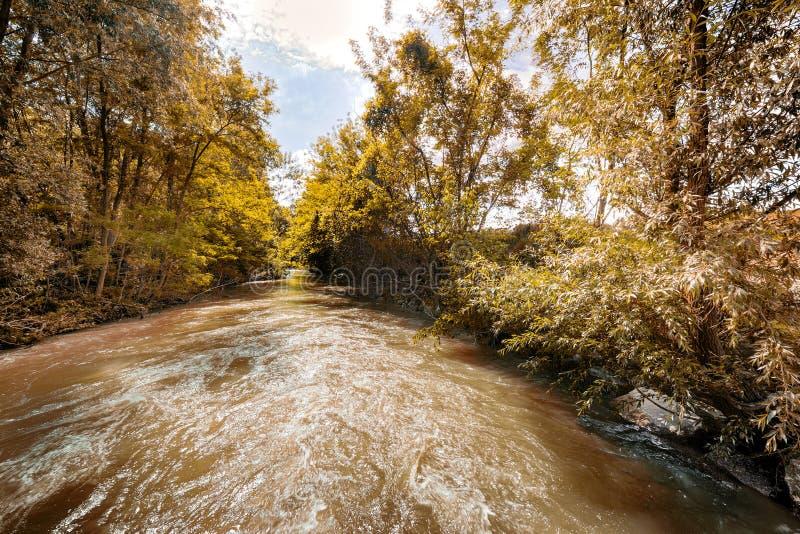 Река на холмах Apennines стоковая фотография