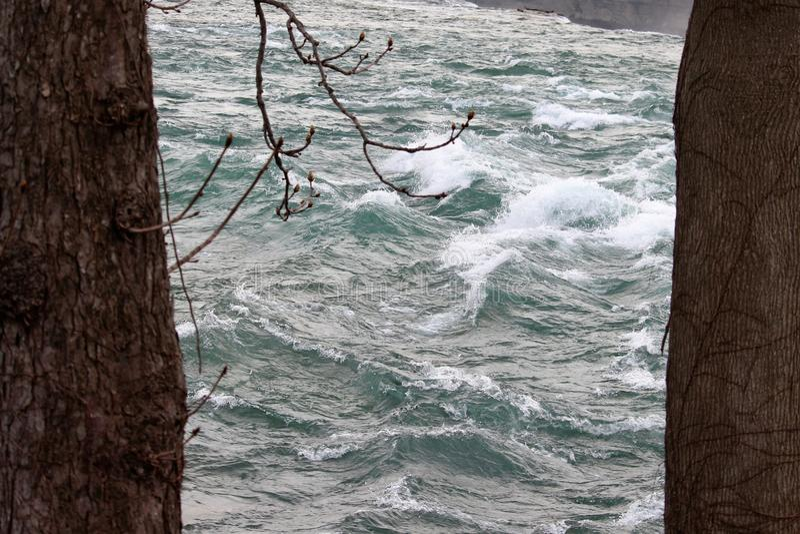 Река Ниагара пропуская между 2 деревьями стоковые фото