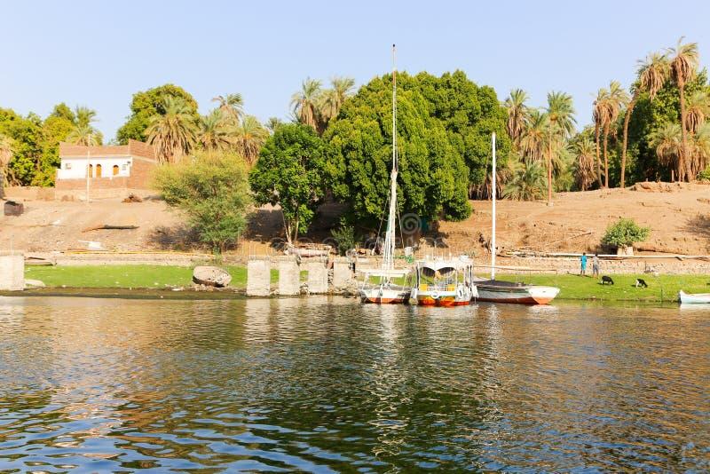 Река Нила стоковые фотографии rf