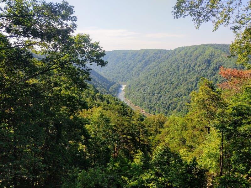 Река нового ущелья реки национальное сценарное стоковые изображения rf