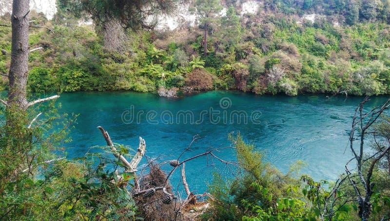 Река Новой Зеландии стоковое изображение rf