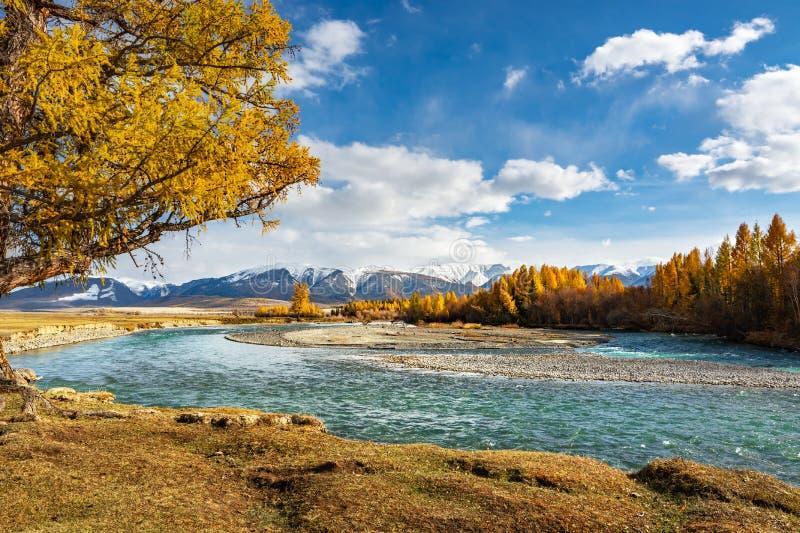 Река пропускает через степь среди гор против голубого неба стоковые изображения