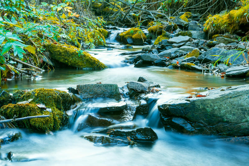 Река пропуская через каменистое дно стоковое изображение rf