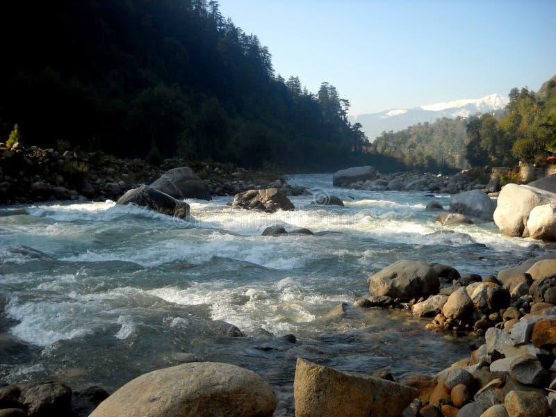 Река, протекающая в лоне природы стоковые фотографии rf