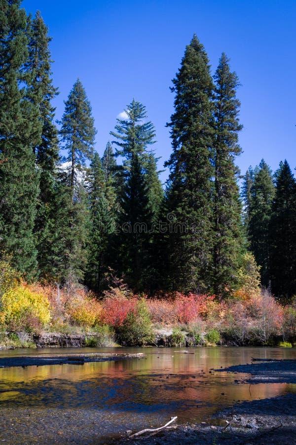 Река румян в осени стоковое фото rf
