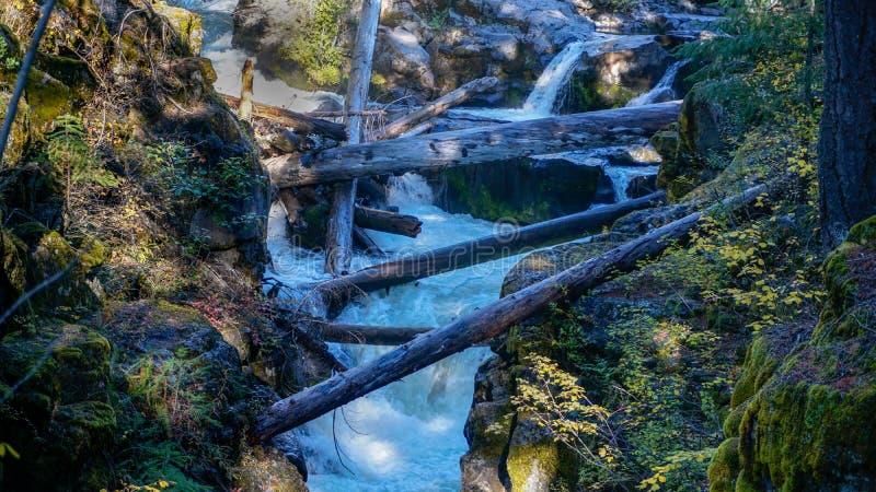 Река румян падает над утесами и через ущелье стоковые изображения